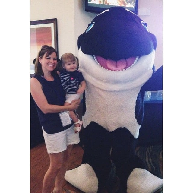 Things to do at Seaworld for Toddlers